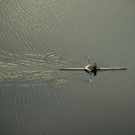 boston-sculling-on-charles-river-x